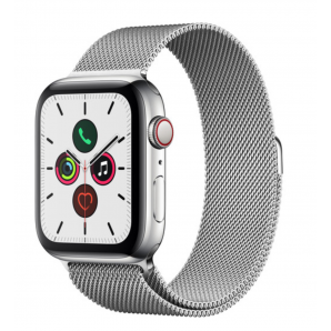 Series 5 (Stainless) Apple Watch